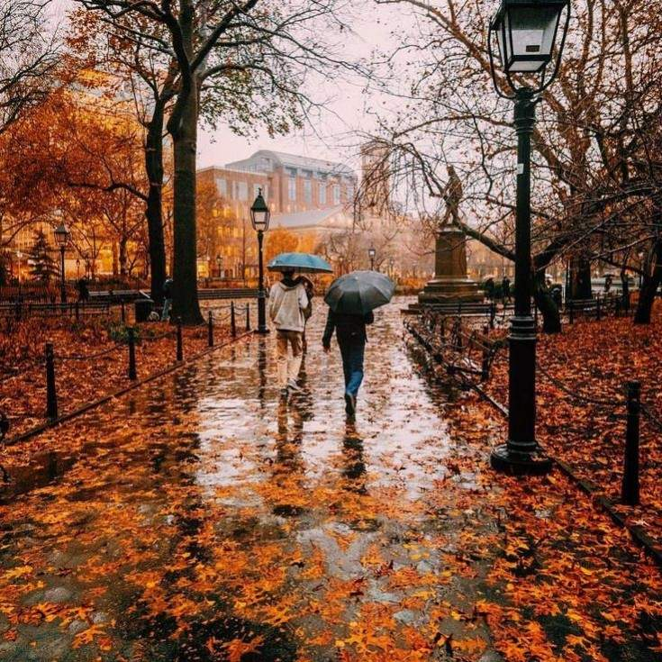 memotret di musim hujan