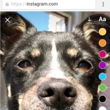 Fitur Instagram Stories Terbaru, Posting Langsung Dari Browser Mobile!