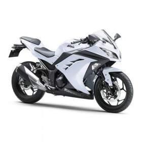 Kawasaki Ninja 250 Standard