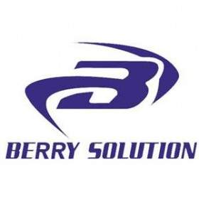 Berry Solution (Bukalapak)
