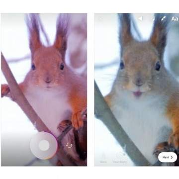 Sambut Libur Akhir Tahun, Instagram Sebar Update Menarik