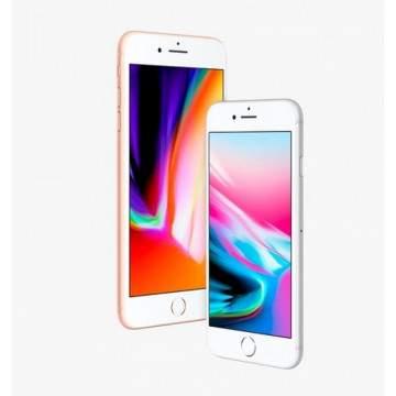 Apple Kembangkan 4 Generasi iPhone Terbaru, Tapi Hanya 3 yang Akan Dipasarkan