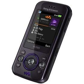 Feature Phone Sony Ericsson W395