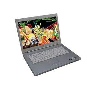 Laptop Sony Vaio VGN-N17C