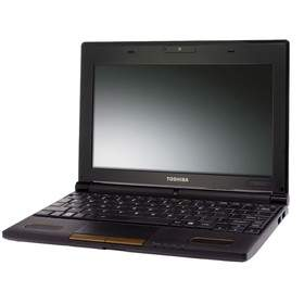 Laptop Toshiba NB505-1004