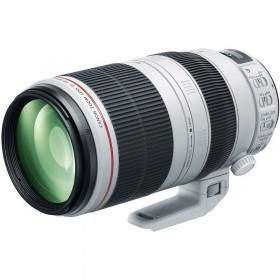 Canon EF 100-400mm f/4.5 - 5.6L IS II USM
