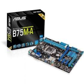 Motherboard Asus B75M-A