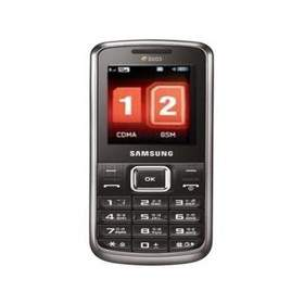 Feature Phone Samsung W139