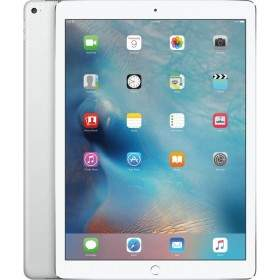 Apple iPad Pro 12.9 in. Wi-Fi 256GB