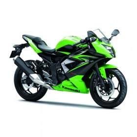 Sepeda Motor Kawasaki Ninja RR Mono
