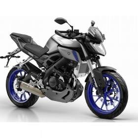Sepeda Motor Yamaha MT-25 Standard