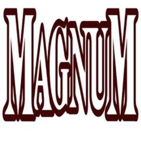 Magnum Electronic