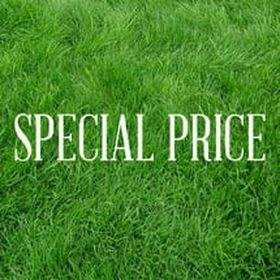 Special Price (Tokopedia)