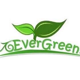 Toko EverGreen