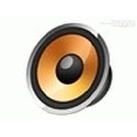 Raja Speaker 13 (Tokopedia)