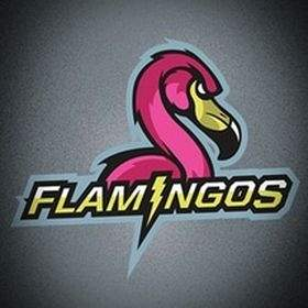 FLAMINGOS (Tokopedia)