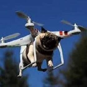 EASY DRONE MARKET (Tokopedia)